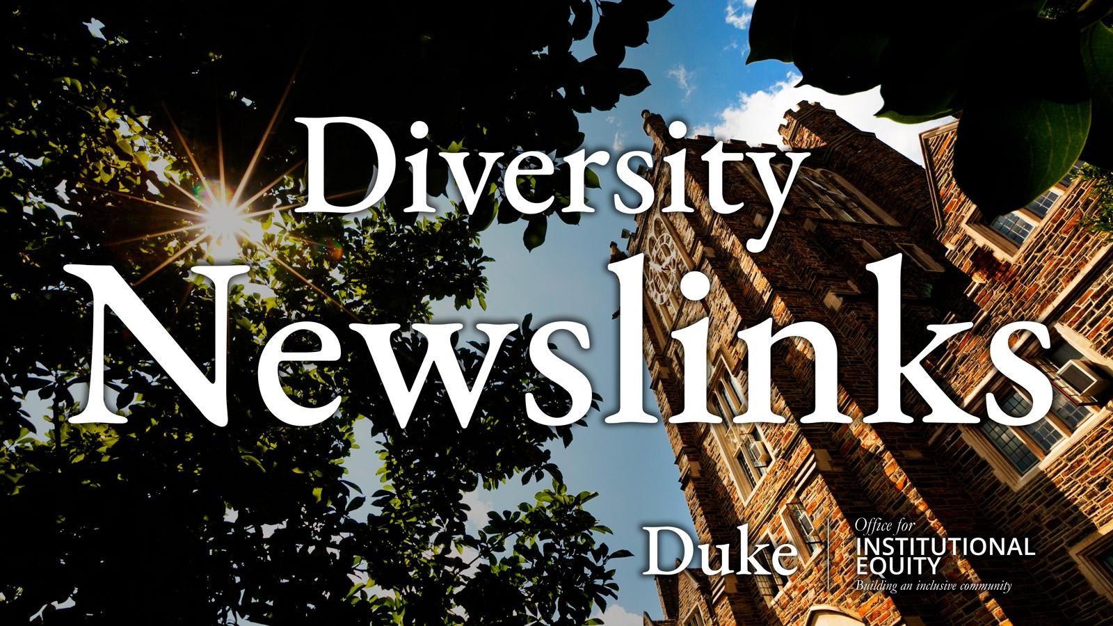 Diversity Newslinks Logo