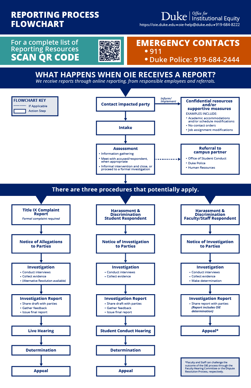 Reporting Process image