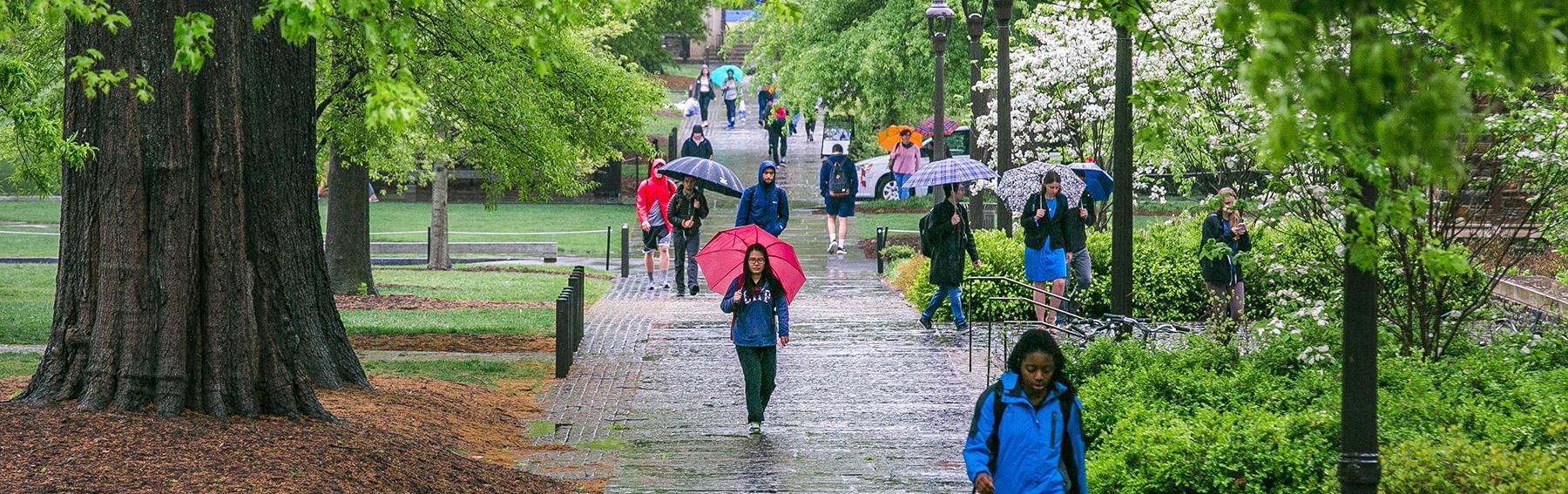 Spring rain on west campus